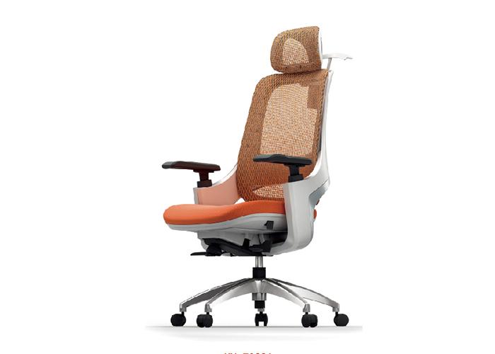 迈斯特人体工学椅B06,上海人体工学椅,【尺寸 价格 图片 品牌